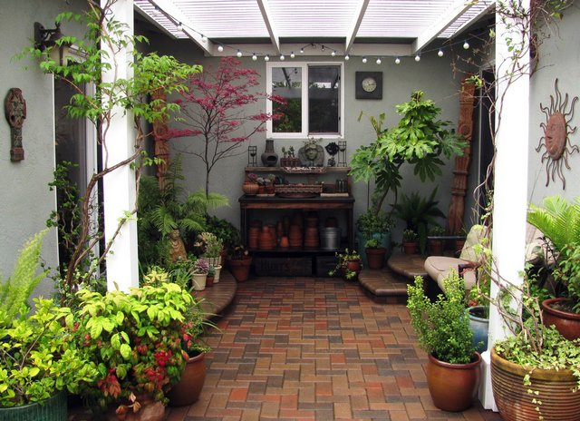 Indoor gardening  Advantages of indoor gardening