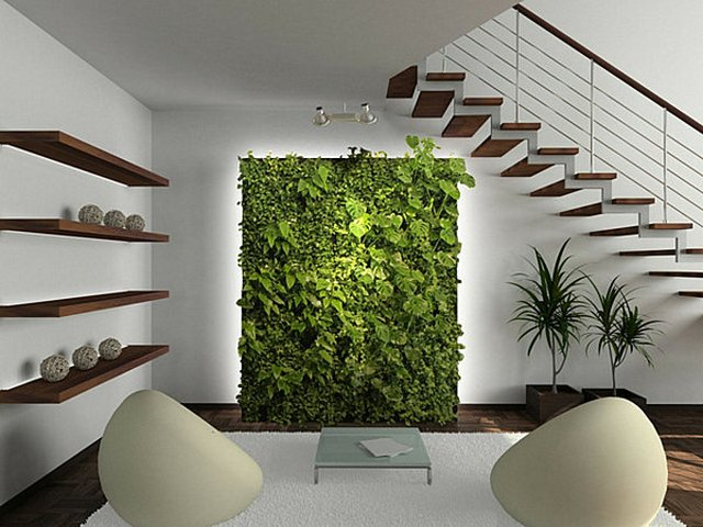 Indoor gardening 3 Advantages of indoor gardening