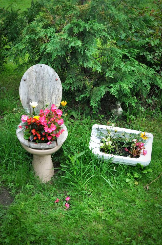 toilet and flowers 1 The Flowers in a Toilet