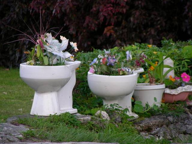 toilet and flowers 15 The Flowers in a Toilet