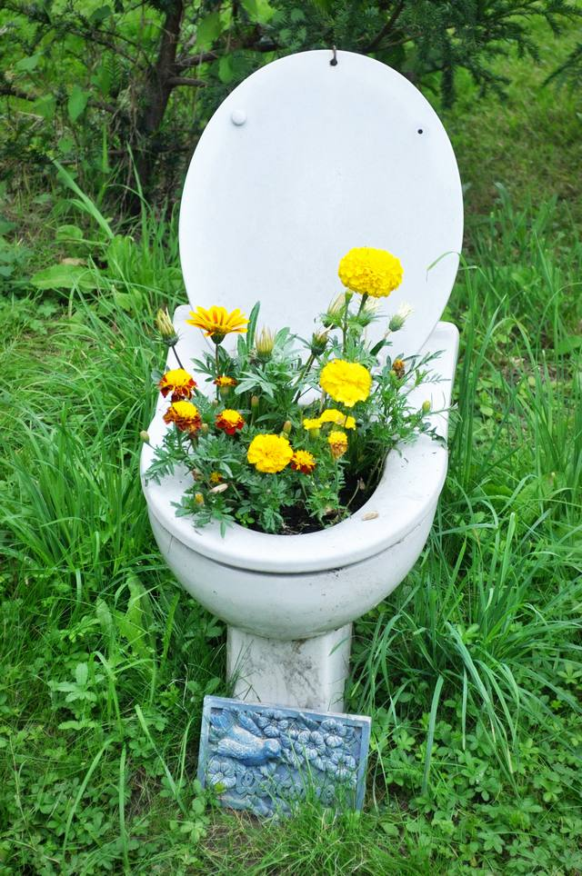 the flowers in a toilet luxury home gardens