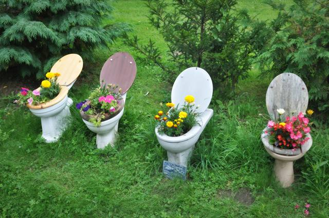 toilet and flowers 4 The Flowers in a Toilet